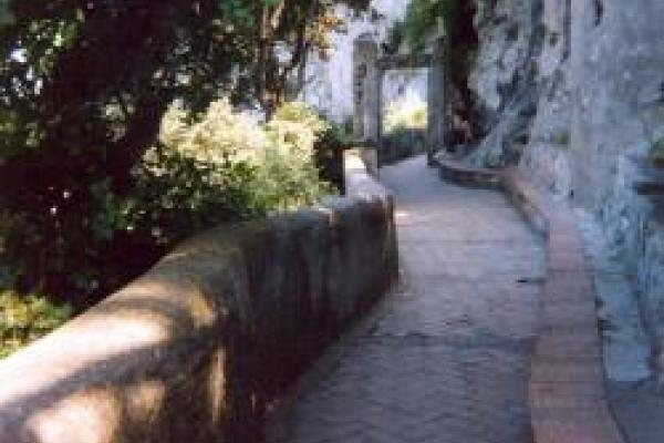 Image of a winding path to symbolize learning and progress.